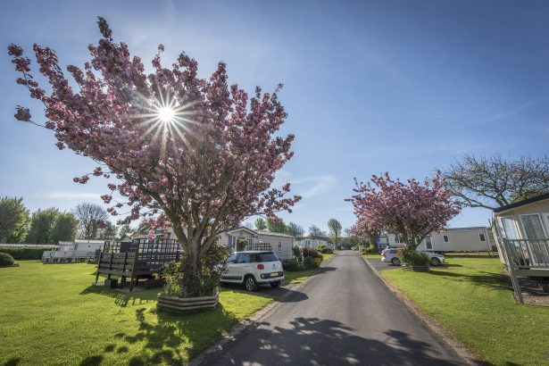 Larkfield Holiday Park